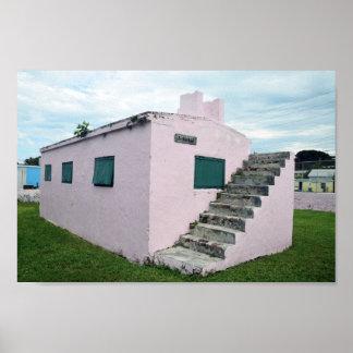 Poster Prison rose des Bahamas, banc de sable de tortue