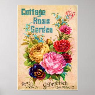 Poster Publicité de cru de roseraie de cottage