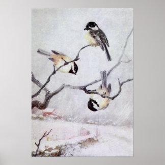 Poster R. Bruce Horsfall - Chickadee Noir-Couvert par cru