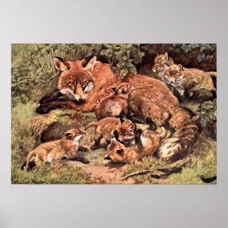 Poster Renarde de Fox avec CUB par Austen, animal sauvage