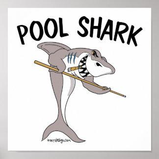 Poster Requin de piscine