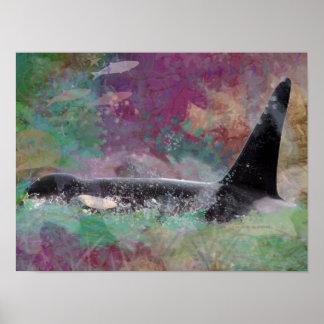 Poster Rêve d'imaginaire de baleine d'orque - baleines
