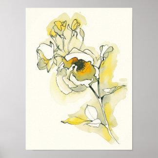 Poster Roses jaunes et blancs