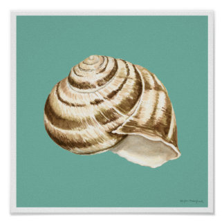 Poster Sépia Shell rayé sur Teal