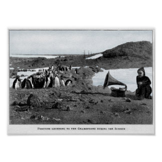 Poster Shackleton dans le phonographe antarctique avec