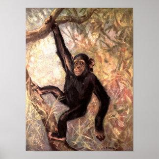 Poster Singe de chimpanzé par le cygne de la CE, animaux