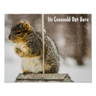 Poster Son de Coooold affiche ici -