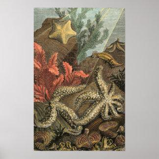 Poster Sous la mer