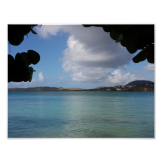 Poster Sous le raisin de mer avec la vue d'océan de