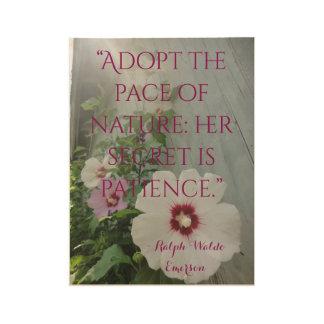 Poster Sur Bois La ketmie en bois de citation de mur fleurit