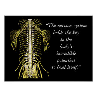 Poster Système nerveux de citations et d'énonciations de
