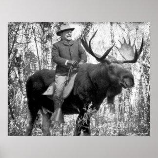 Poster Teddy Roosevelt montant un orignal de Taureau