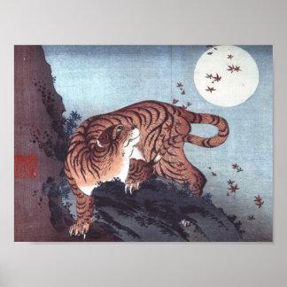 Poster Tigre par clair de lune