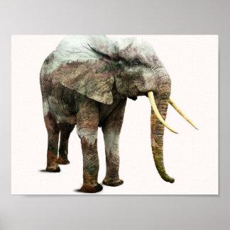Poster Transformation d'éléphant