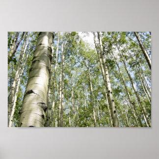 Poster Un beau jour dans l'affiche de forêt