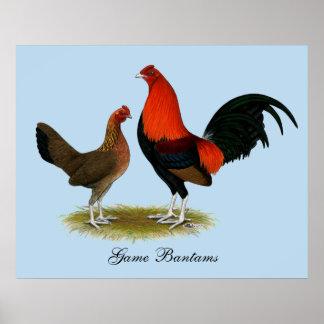 Poster Vieux coqs nains anglais de jeu :  Paires de rouge