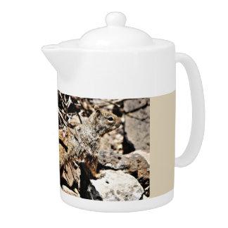 Pot de thé d'écureuil de Sonoran