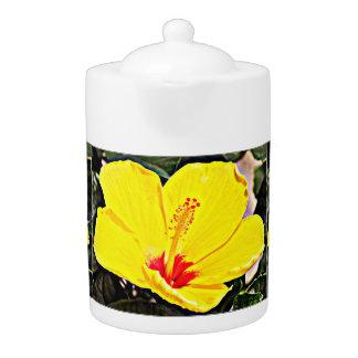 Pot jaune de thé de ketmie