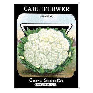 Potager blanc de paquet de graine de chou-fleur carte postale