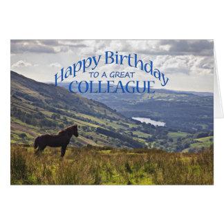Pour un collègue, carte d'anniversaire de cheval