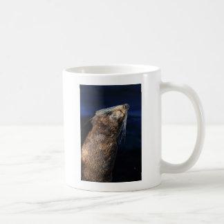 Prendre un bain de soleil de joint de fourrure mug