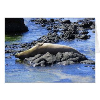 Prendre un bain de soleil hawaïen de joint de carte