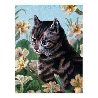 Prise de du temps de sentir les fleurs cartes postales