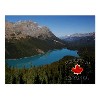 Produit de lac Peyto du Canada Carte Postale