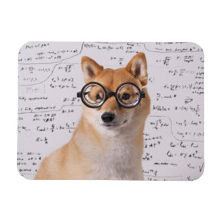 """Professeur Barkley 4"""""""" aimant flexible de la photo Magnet Flexible"""