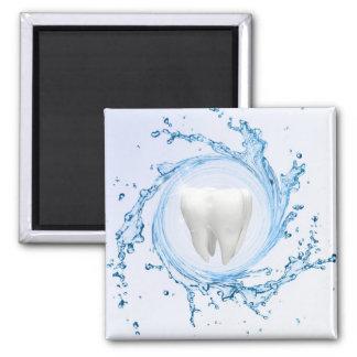 Professionnel médical de dent de dentiste - aimant