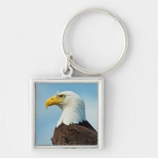 Profil d'Eagle chauve Porte-clés