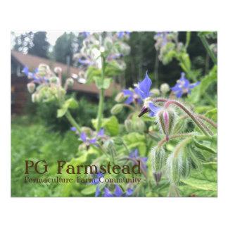 Prospectus 11,4 Cm X 14,2 Cm Insecte de ferme de PAGE