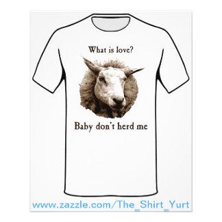 Prospectus 11,4 Cm X 14,2 Cm Le bébé ne me vivent pas en troupe des moutons
