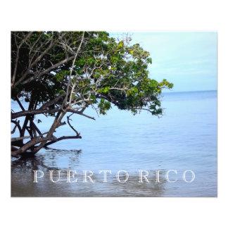 Prospectus 11,4 Cm X 14,2 Cm Plage de Porto Rico