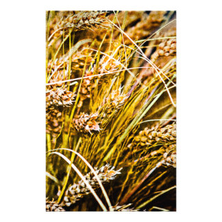 Prospectus 14 Cm X 21,6 Cm Gerbe de blé - Merci
