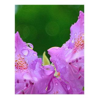 Prospectus 21,6 Cm X 24,94 Cm Fleur violette