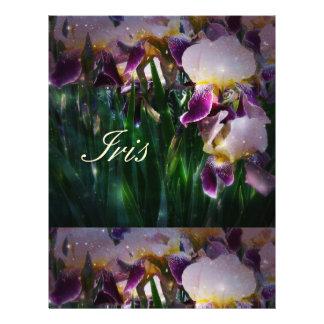 Prospectus 21,6 Cm X 24,94 Cm Iris de scintillement