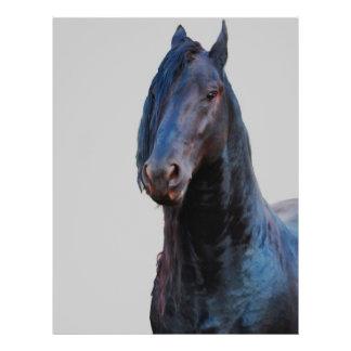 Prospectus 21,6 Cm X 24,94 Cm Je suis cheval