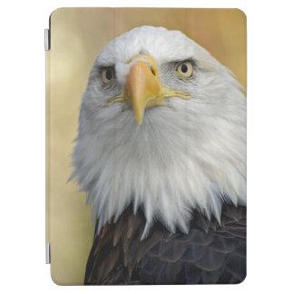 Protection iPad Air Bel aigle chauve