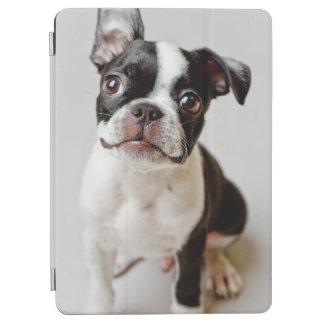 Protection iPad Air Boston Terrier