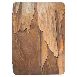 Protection iPad Air Cas en pierre d'élégance de pli pour des amants de