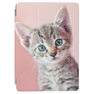 Protection iPad Air Chaton mignon avec les yeux bleus