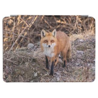 Protection iPad Air Fin de Fox rouge et personnel