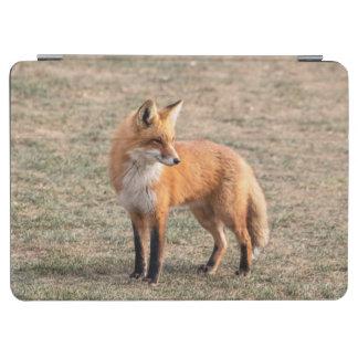 Protection iPad Air Fox rouge dans un domaine