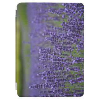 Protection iPad Air Jardin d'agrément pourpre de lavande