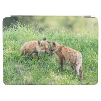 Protection iPad Air Kits de Fox rouge