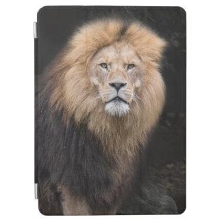 Protection iPad Air Portrait de plan rapproché d'un lion masculin