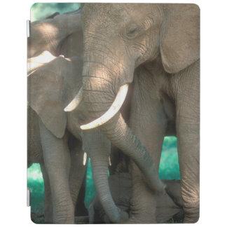Protection iPad Éléphants protégeant des jeunes