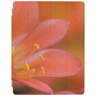 Protection iPad Fleur assez rouge de Clivia