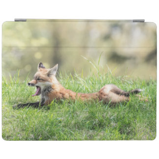 Protection iPad Kit de Fox rouge